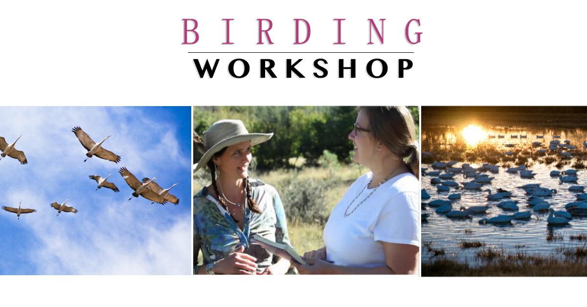 Birding Workshop 10