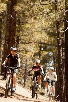 Women Riders In Woods Small