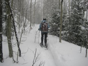 Cross-country skiing in Telluride (Courtesy of Telluride Tourism)